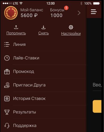 Разделы приложения olimp android