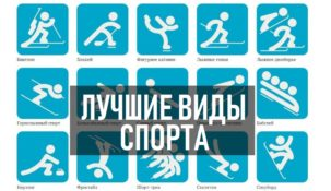 На какой вид спорта лучше делать ставки?