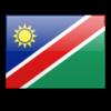 Прогноз на матч Намибия - Замбия 27.01.2021