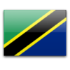 Прогноз на матч Танзания - Гвинея 27.01.2021