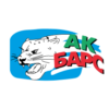 Автомобилист – Ак Барс. Прогноз на матч